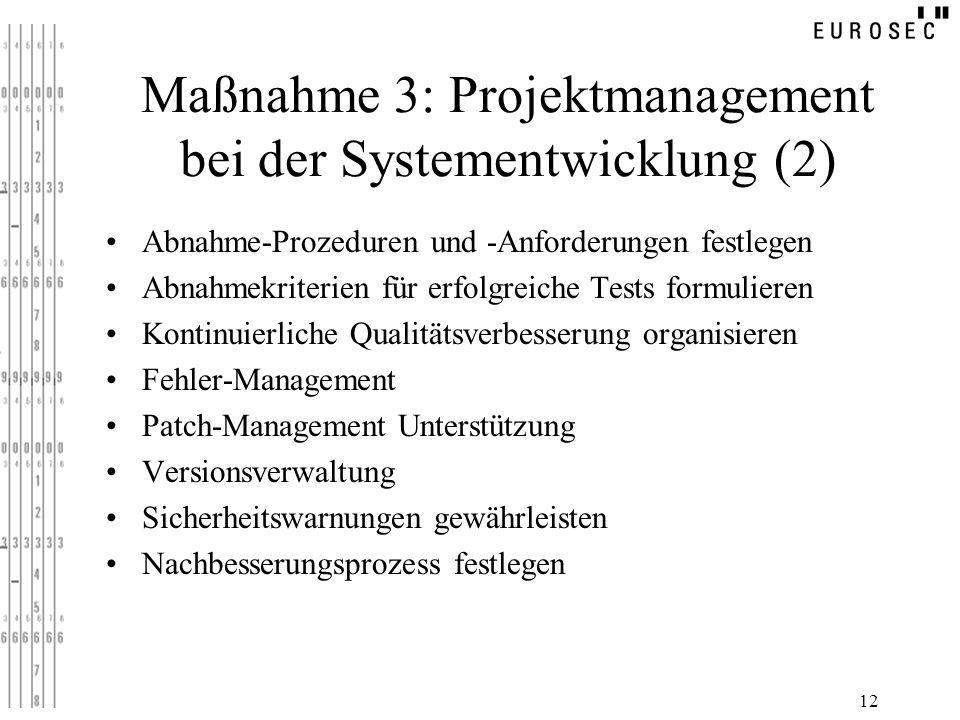 Maßnahme 3: Projektmanagement bei der Systementwicklung (2)