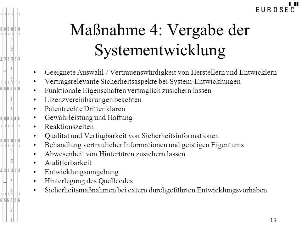 Maßnahme 4: Vergabe der Systementwicklung