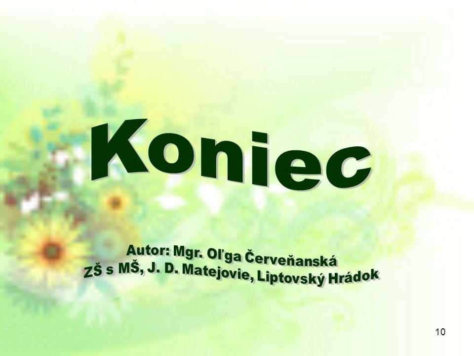 Koniec Autor: Mgr. Oľga Červeňanská
