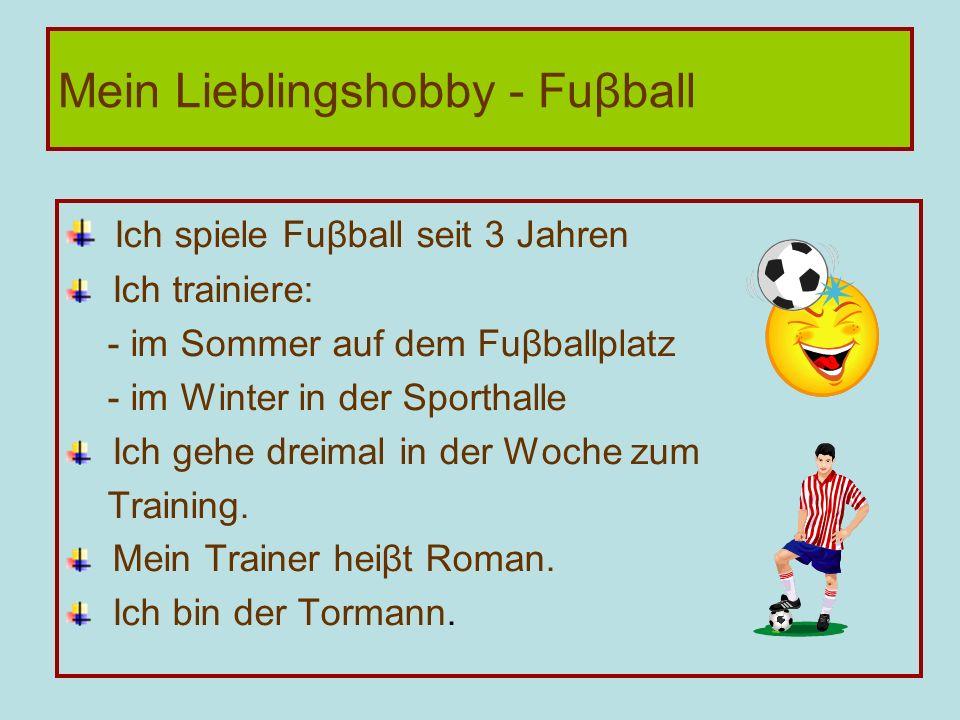 Mein Lieblingshobby - Fuβball