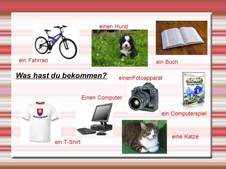 Was hast du bekommen einen Hund ein Fahrrad ein Buch einenFotoapparat