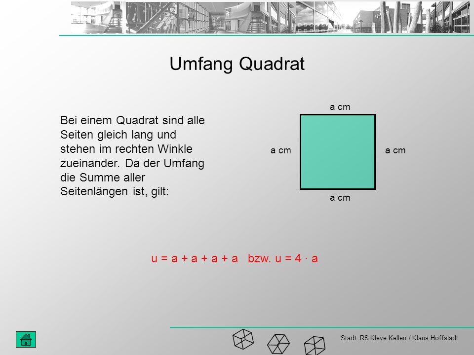 Umfang Quadrat a cm.