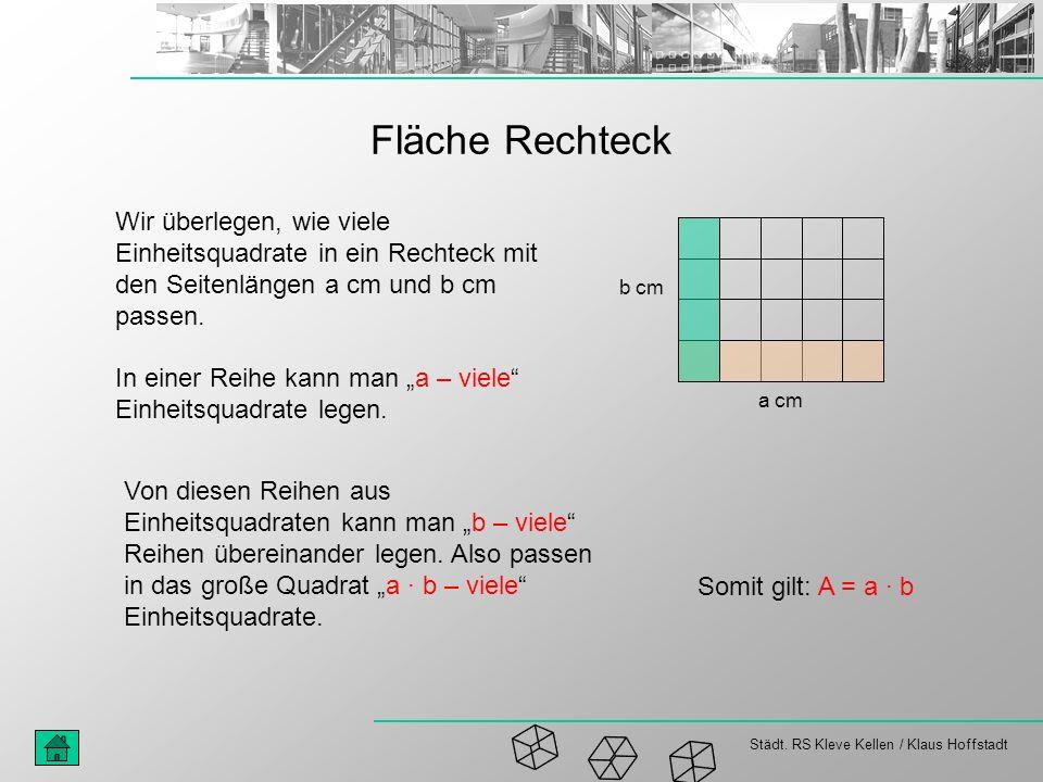 Fläche Rechteck Wir überlegen, wie viele Einheitsquadrate in ein Rechteck mit den Seitenlängen a cm und b cm passen.