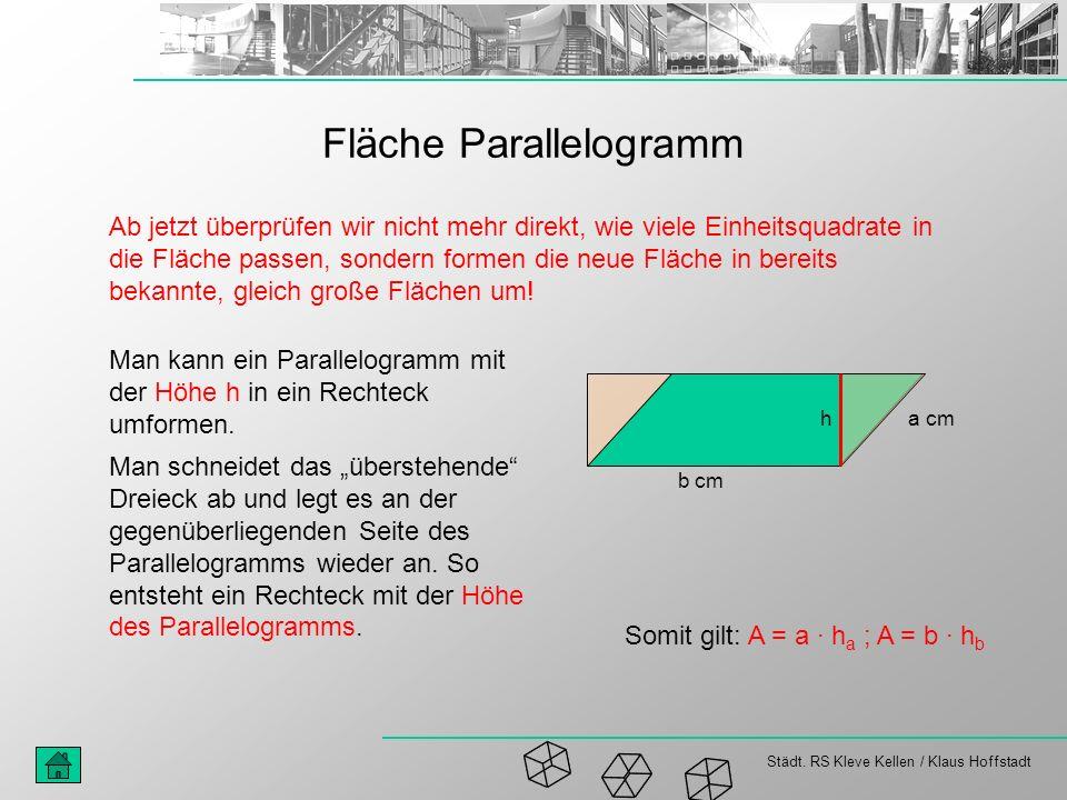 Fläche Parallelogramm