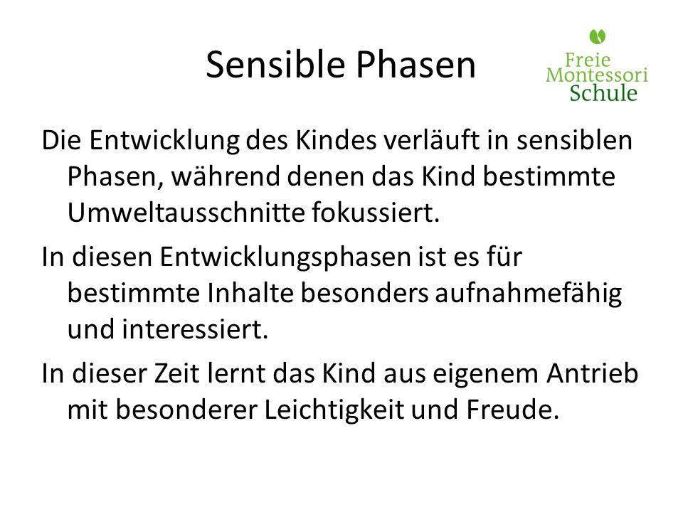 Sensible Phasen