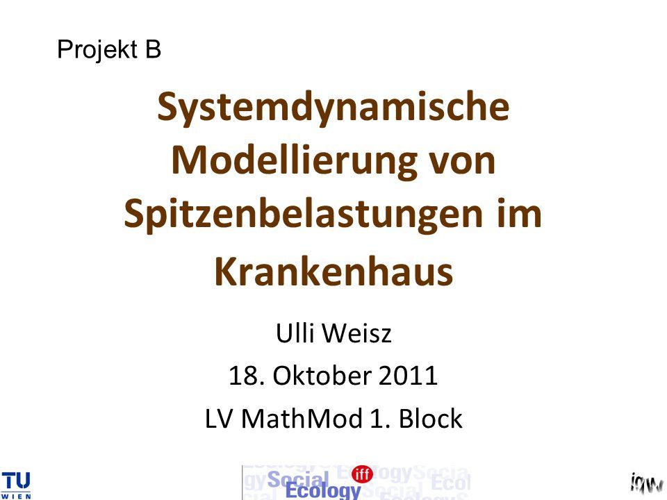 Systemdynamische Modellierung von Spitzenbelastungen im Krankenhaus