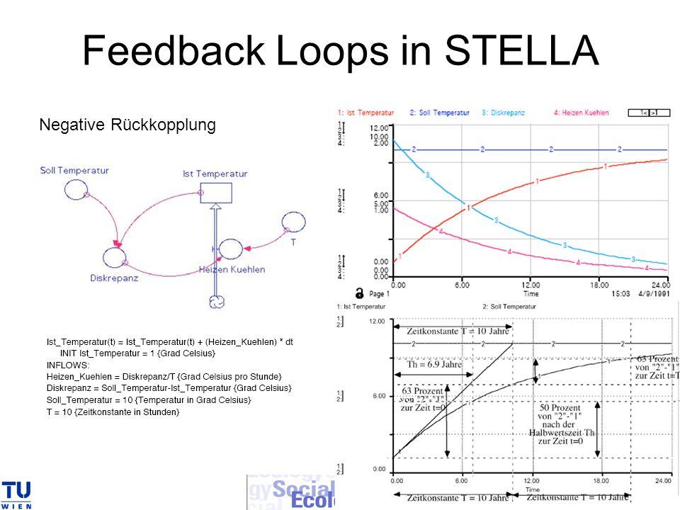 Feedback Loops in STELLA