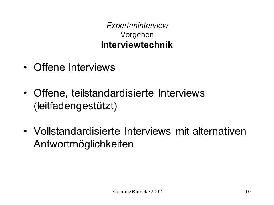 Experteninterview Vorgehen Interviewtechnik