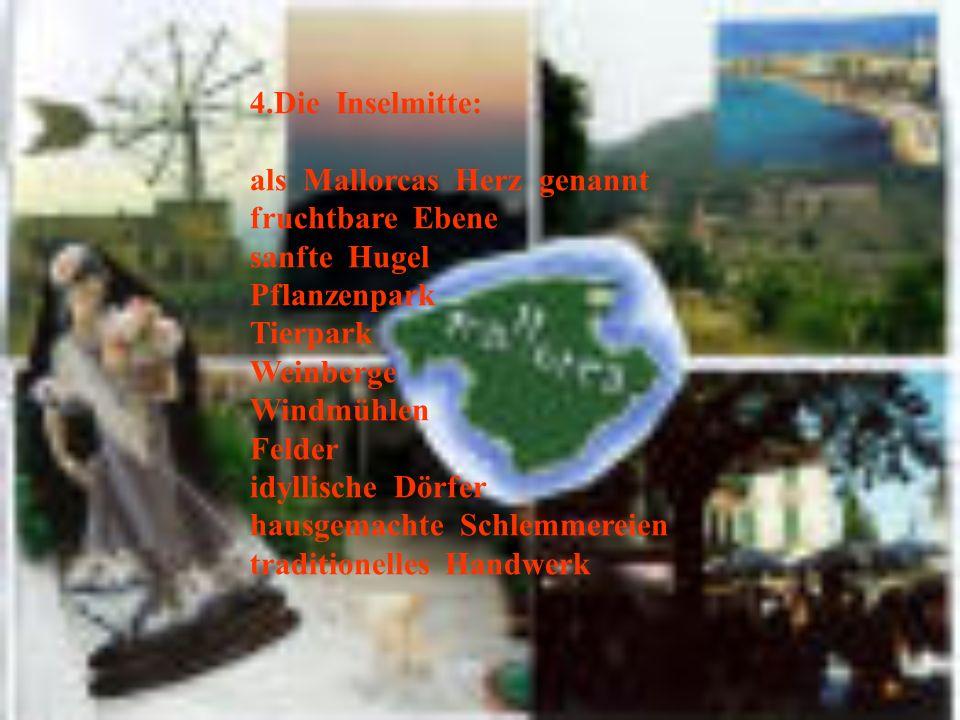 4.Die Inselmitte: als Mallorcas Herz genannt. fruchtbare Ebene. sanfte Hugel. Pflanzenpark.