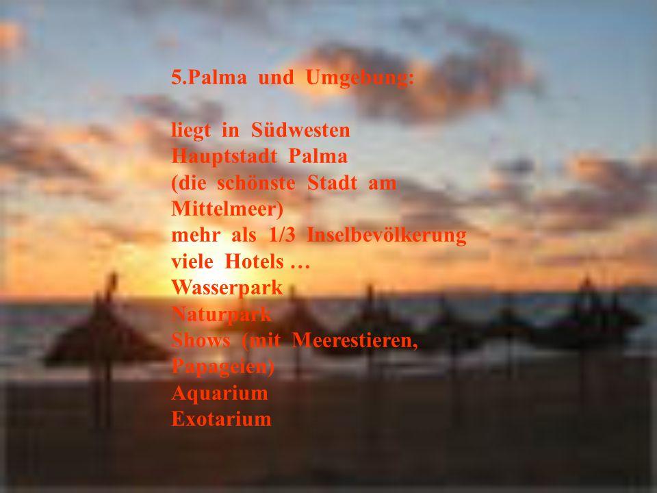 5.Palma und Umgebung: liegt in Südwesten. Hauptstadt Palma. (die schönste Stadt am Mittelmeer)