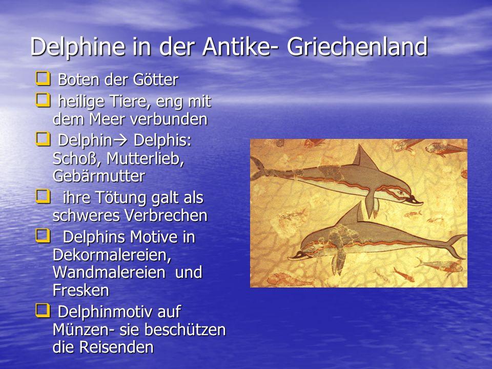 Delphine in der Antike- Griechenland
