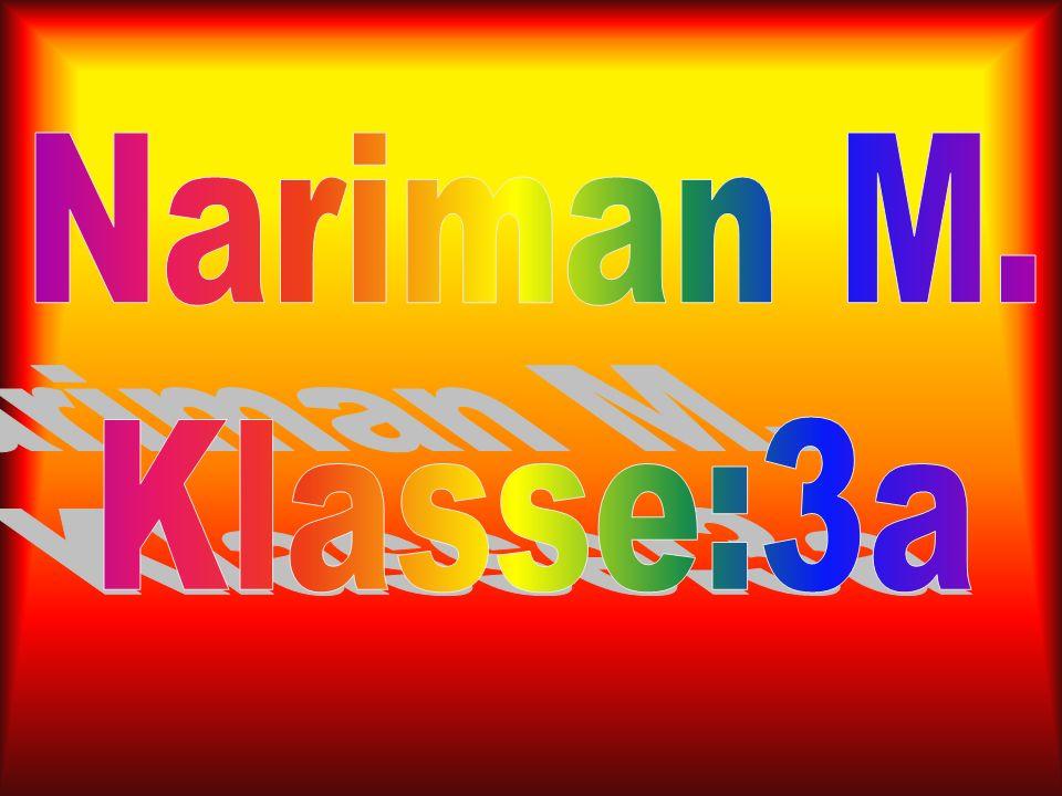 Nariman M. Klasse:3a