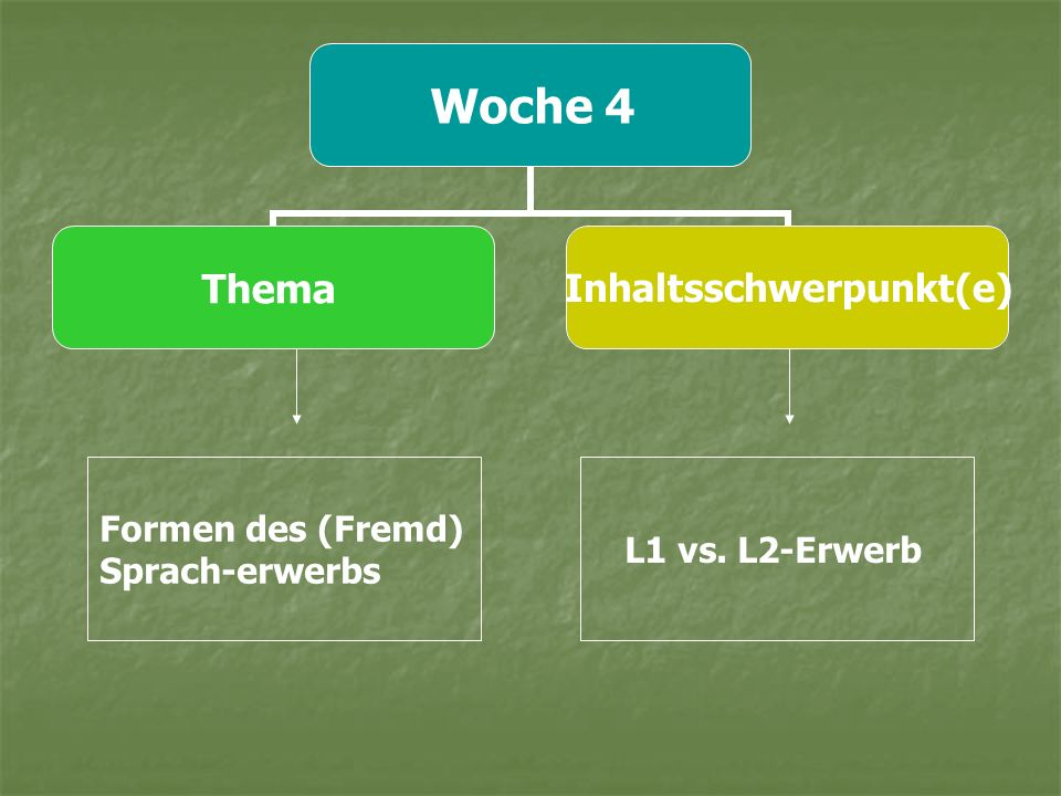 Formen des (Fremd) Sprach-erwerbs L1 vs. L2-Erwerb