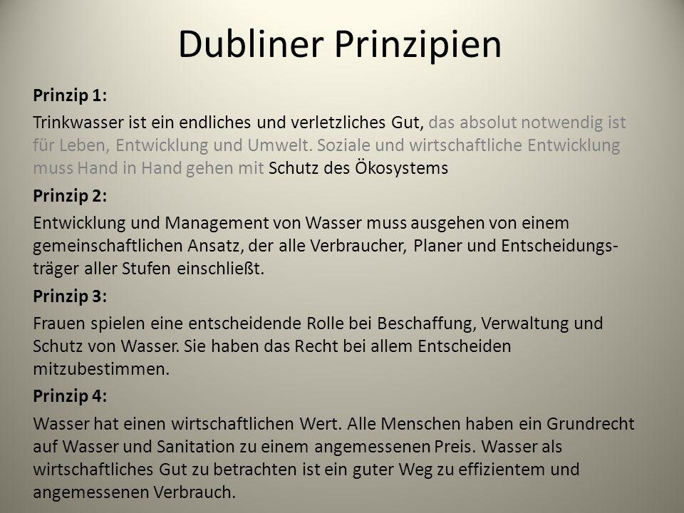 Dubliner Prinzipien Prinzip 1: