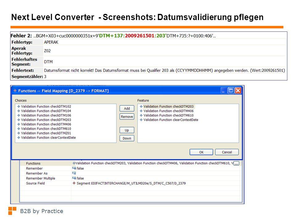 Next Level Converter - Screenshots: Datumsvalidierung pflegen