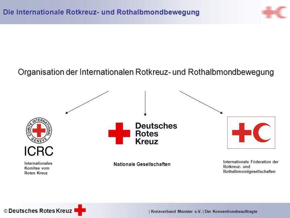 Organisation der Internationalen Rotkreuz- und Rothalbmondbewegung