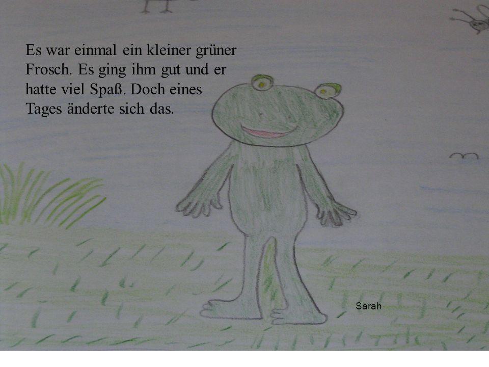 Es war einmal ein kleiner grüner Frosch