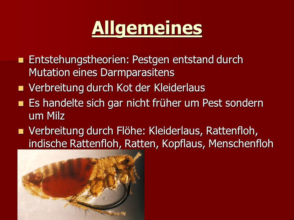 Allgemeines Entstehungstheorien: Pestgen entstand durch Mutation eines Darmparasitens. Verbreitung durch Kot der Kleiderlaus.