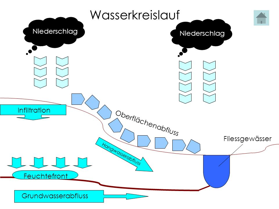 Wasserkreislauf Niederschlag Niederschlag Infiltration