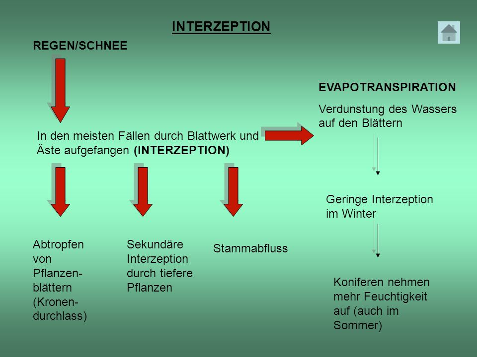 INTERZEPTION REGEN/SCHNEE EVAPOTRANSPIRATION