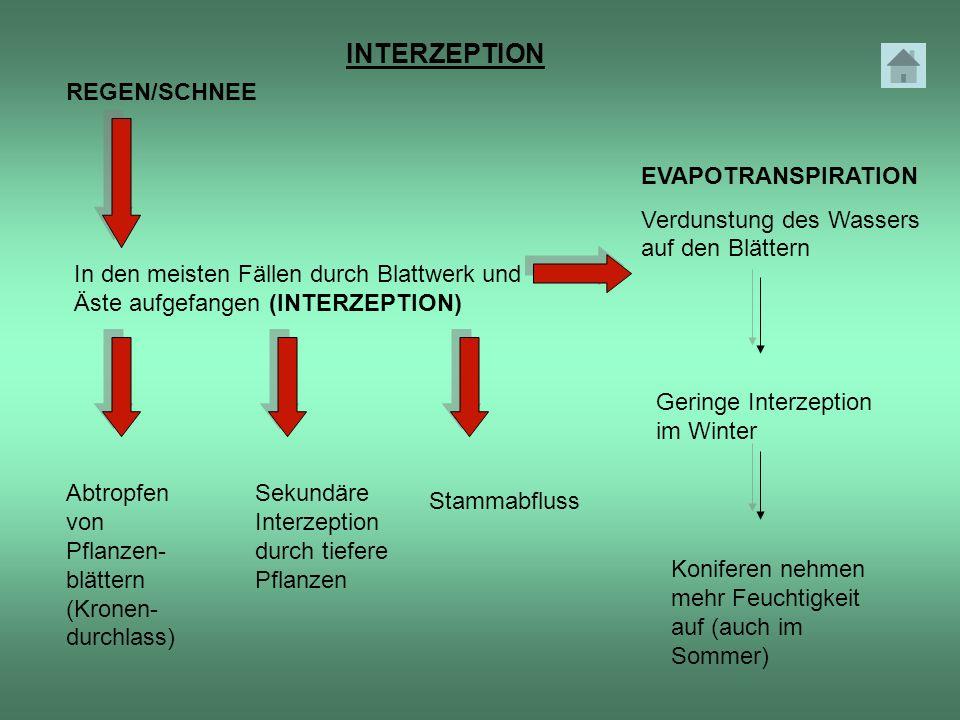 INTERZEPTION REGEN/SCHNEE EVAPOTRANSPIRATION