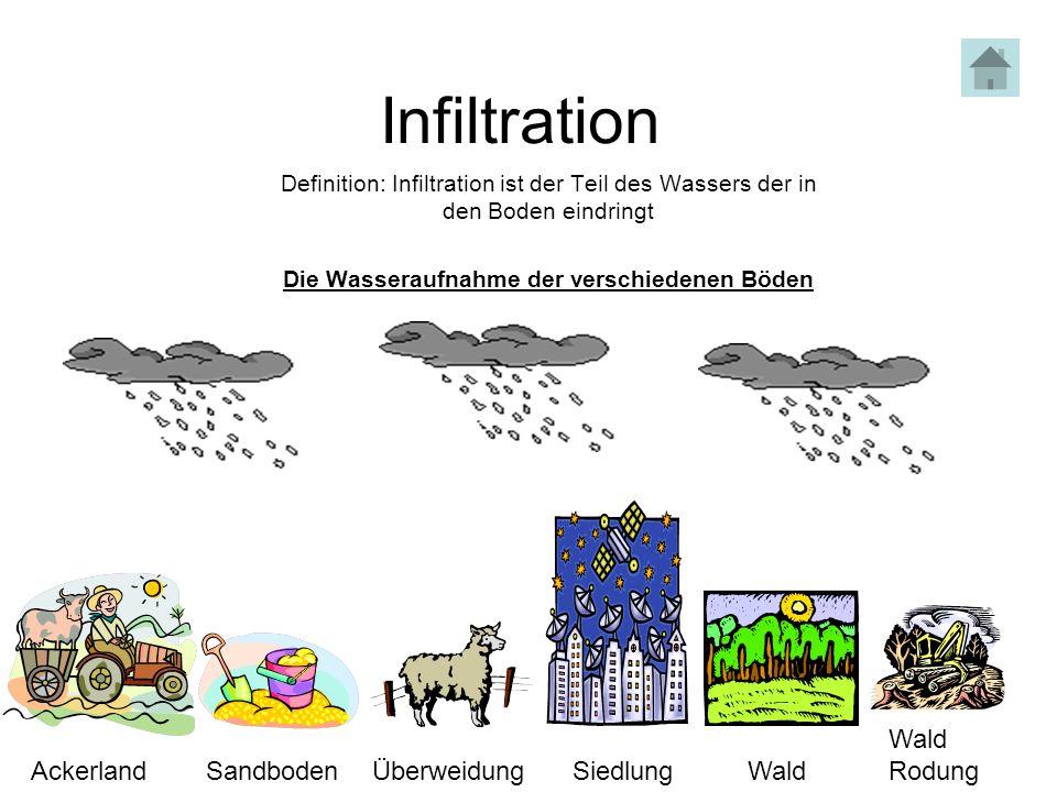 Die Wasseraufnahme der verschiedenen Böden