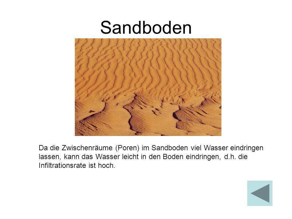 Sandboden