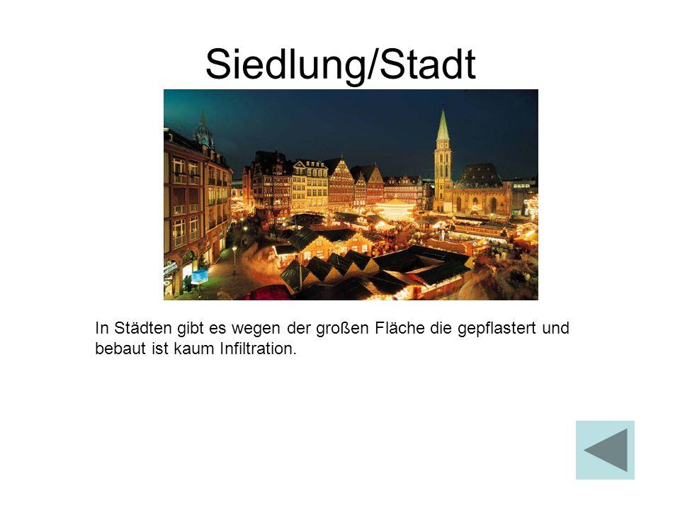 Siedlung/Stadt In Städten gibt es wegen der großen Fläche die gepflastert und bebaut ist kaum Infiltration.