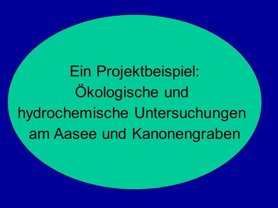 hydrochemische Untersuchungen am Aasee und Kanonengraben