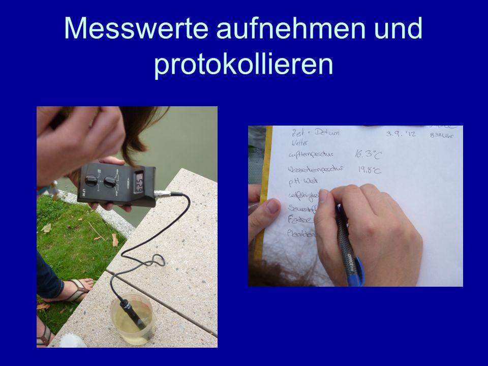 Messwerte aufnehmen und protokollieren