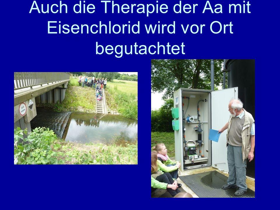 Auch die Therapie der Aa mit Eisenchlorid wird vor Ort begutachtet