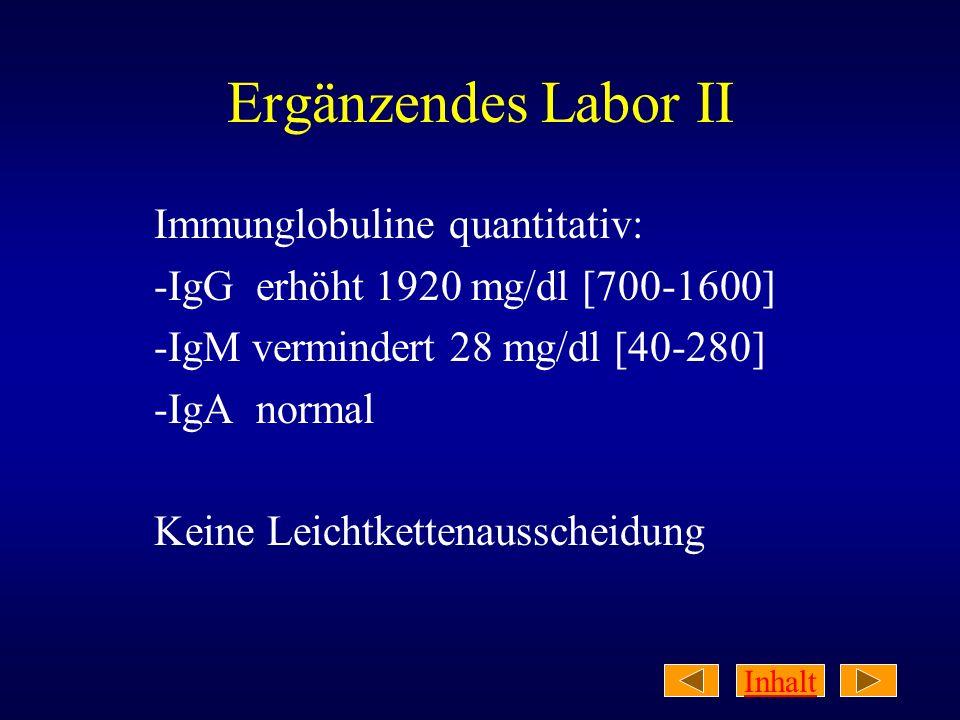 Ergänzendes Labor II Immunglobuline quantitativ: