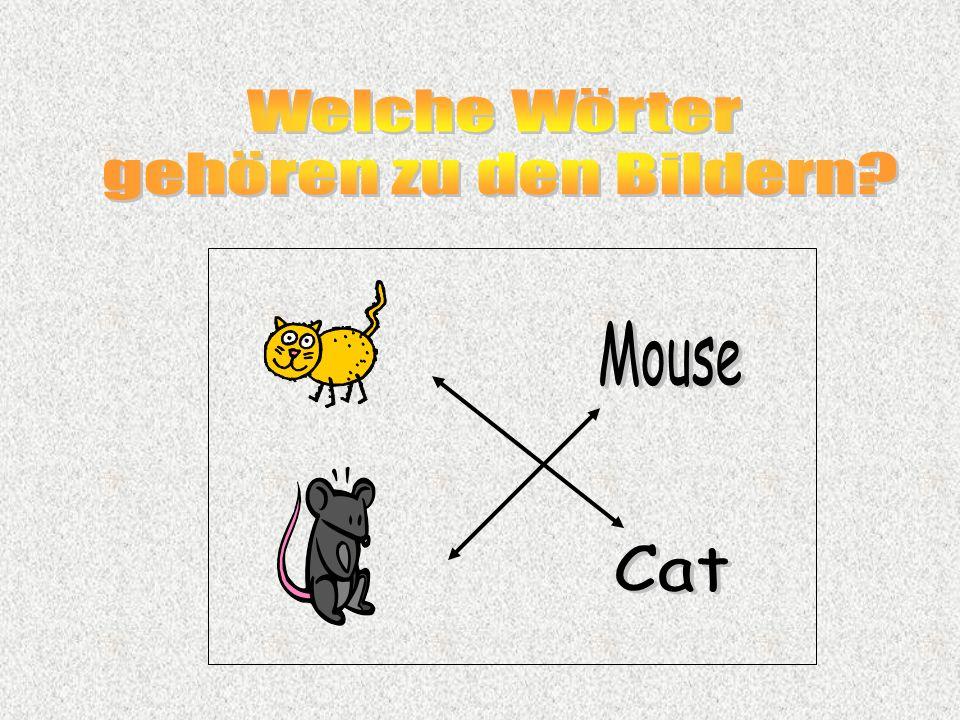 Welche Wörter gehören zu den Bildern Cat Mouse
