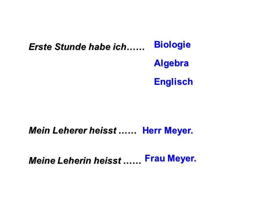 Biologie Erste Stunde habe ich…… Algebra. Englisch. Mein Leherer heisst …… Herr Meyer. Frau Meyer.