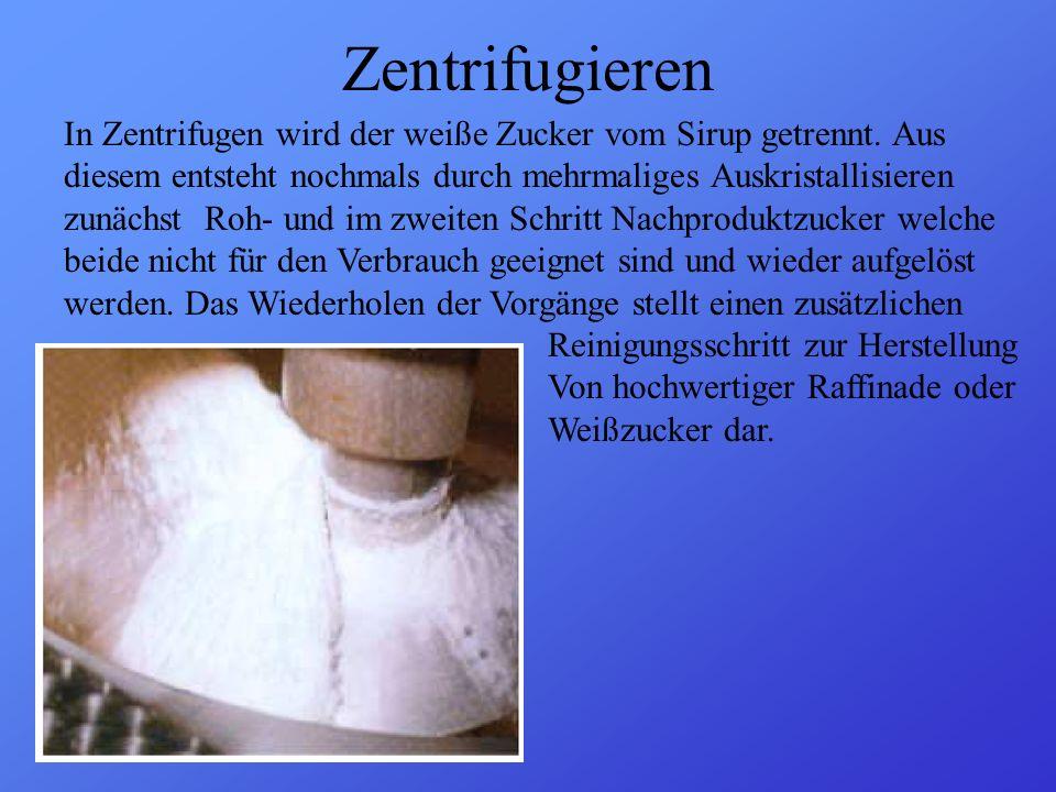 Zentrifugieren In Zentrifugen wird der weiße Zucker vom Sirup getrennt. Aus. diesem entsteht nochmals durch mehrmaliges Auskristallisieren.