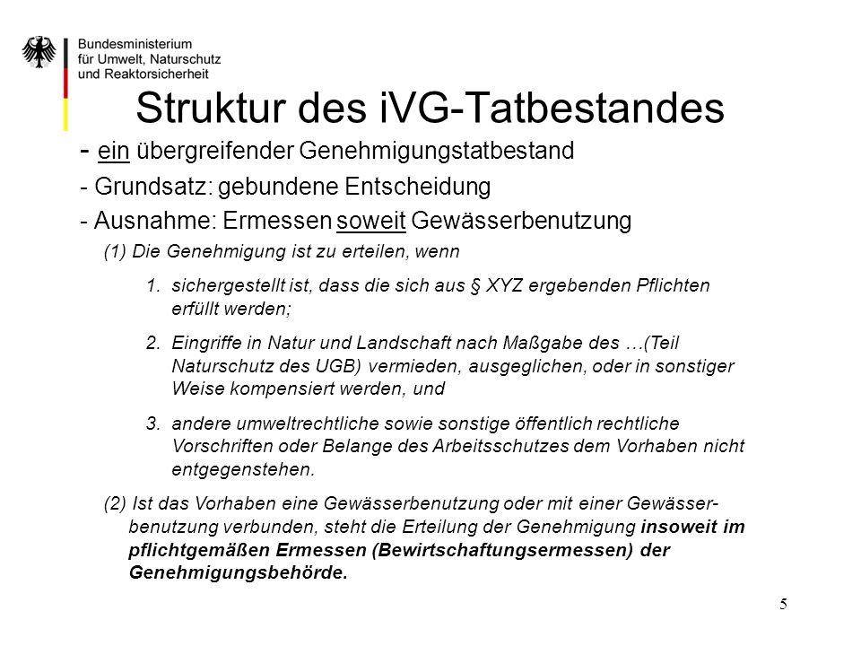 Struktur des iVG-Tatbestandes