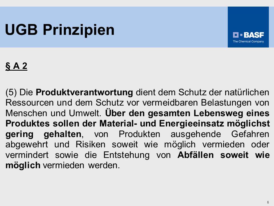 UGB Prinzipien § A 2.