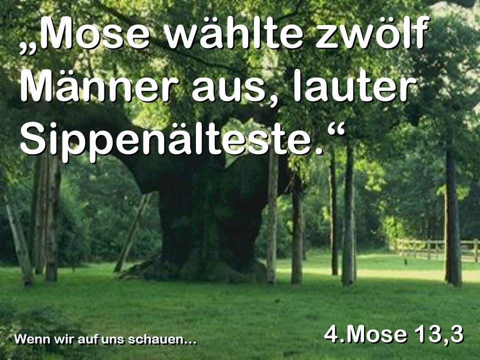"""Mose wählte zwölf Männer aus, lauter Sippenälteste."