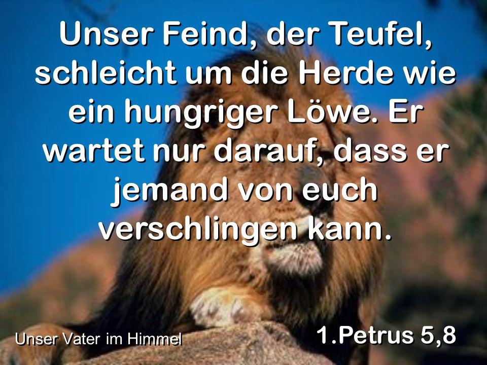 Unser Feind, der Teufel, schleicht um die Herde wie ein hungriger Löwe