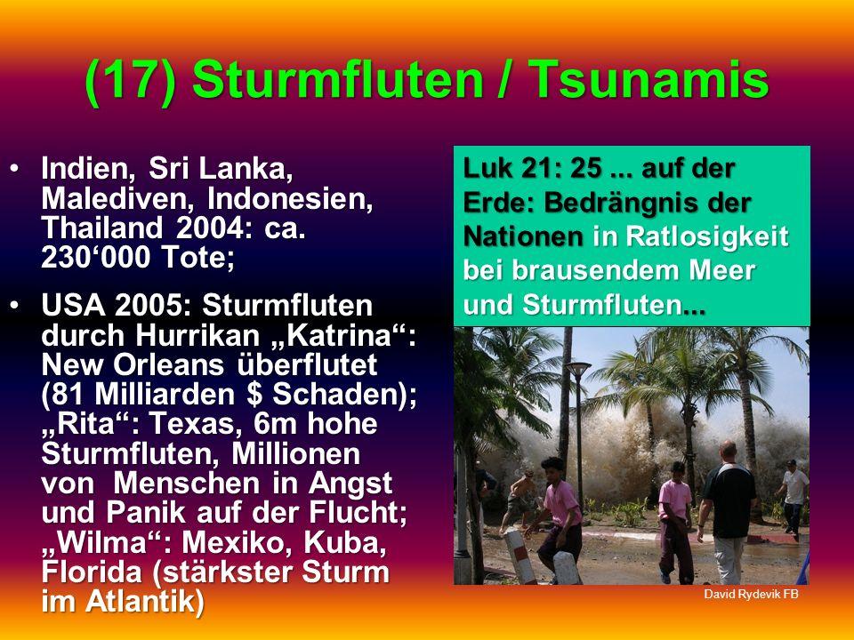 (17) Sturmfluten / Tsunamis