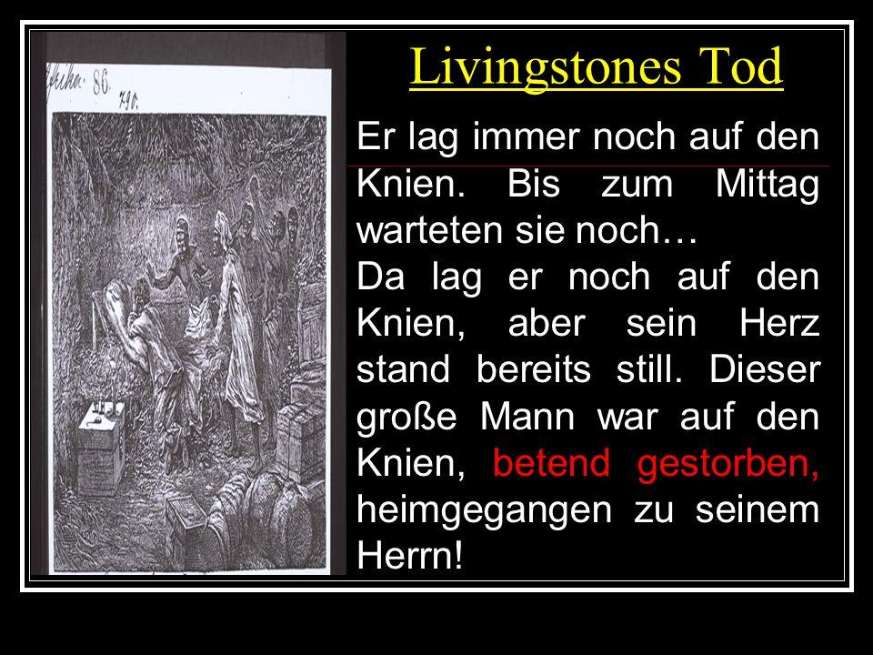 Livingstones Tod Er lag immer noch auf den Knien. Bis zum Mittag warteten sie noch…