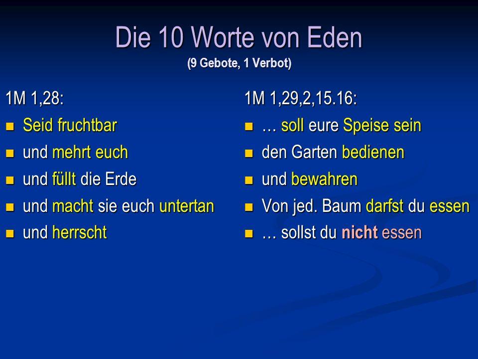 Die 10 Worte von Eden (9 Gebote, 1 Verbot)