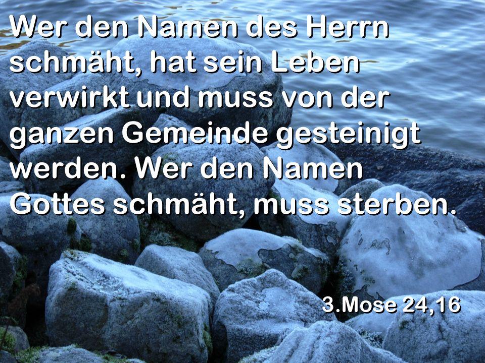 Wer den Namen des Herrn schmäht, hat sein Leben verwirkt und muss von der ganzen Gemeinde gesteinigt werden. Wer den Namen Gottes schmäht, muss sterben.