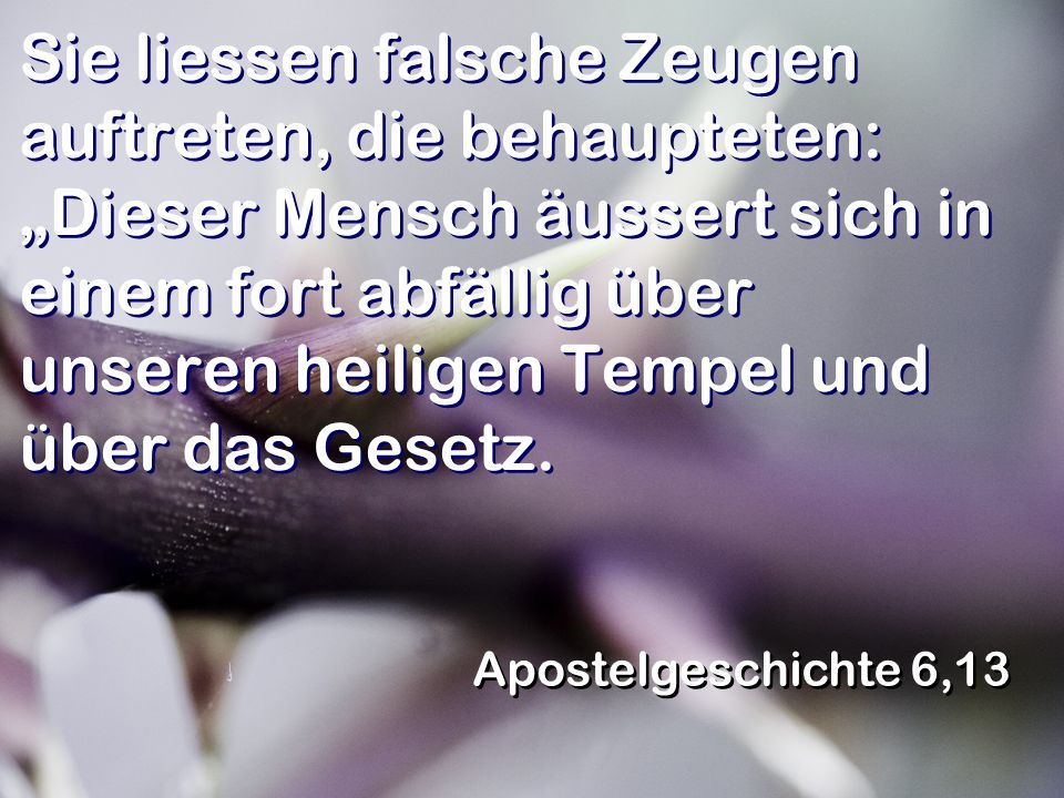 """Sie liessen falsche Zeugen auftreten, die behaupteten: """"Dieser Mensch äussert sich in einem fort abfällig über unseren heiligen Tempel und über das Gesetz."""
