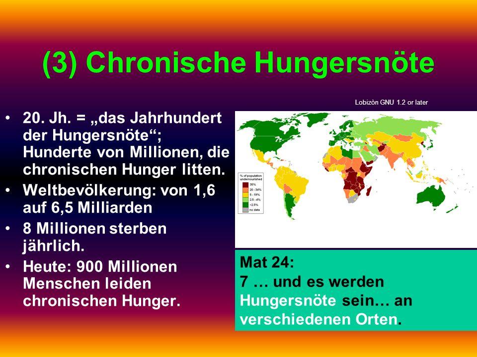 (3) Chronische Hungersnöte