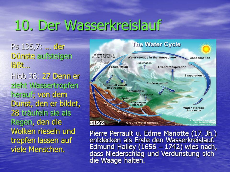 10. Der Wasserkreislauf Ps 135,7: … der Dünste aufsteigen läßt…