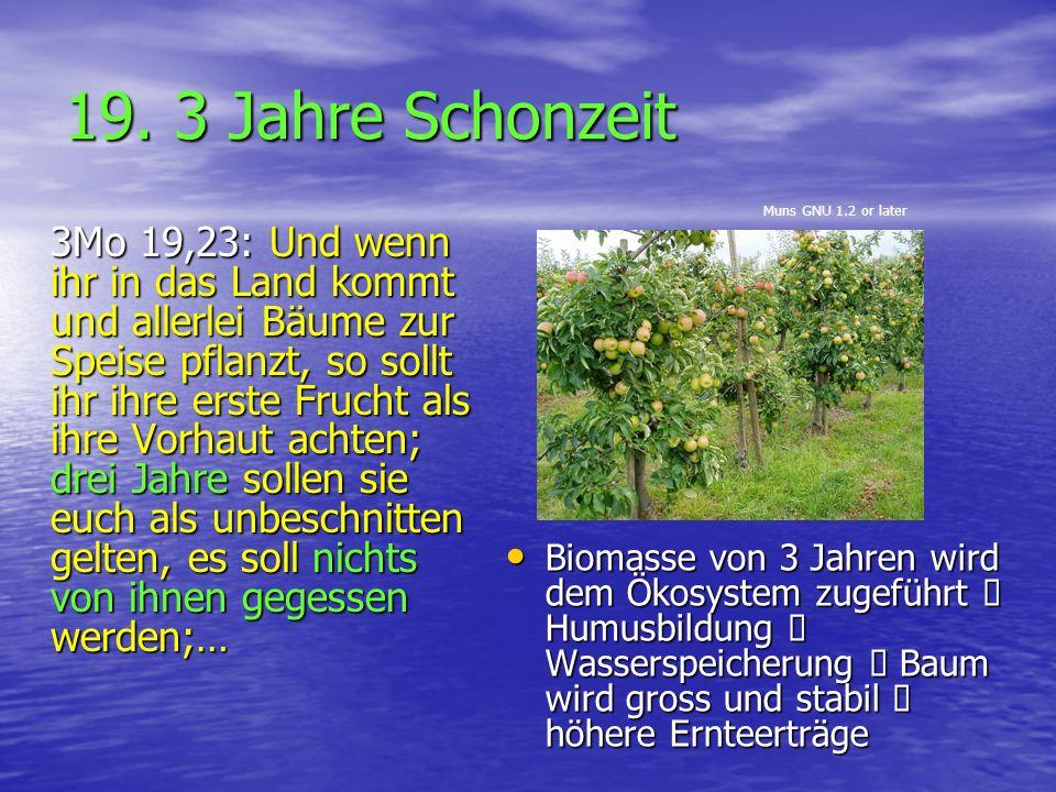 19. 3 Jahre Schonzeit Muns GNU 1.2 or later.
