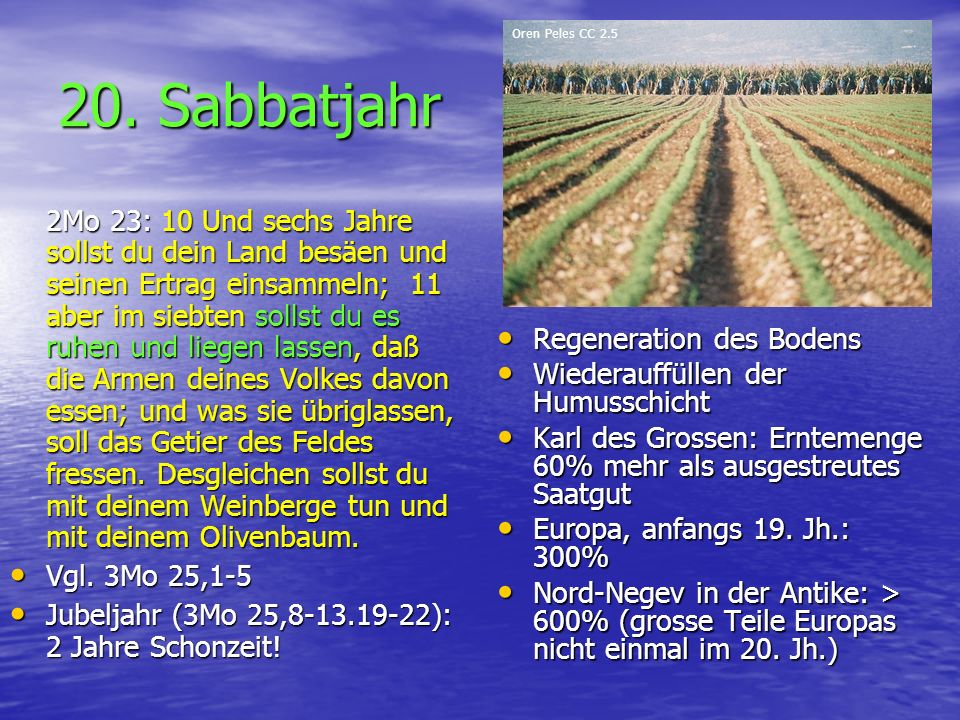 20. Sabbatjahr Regeneration des Bodens