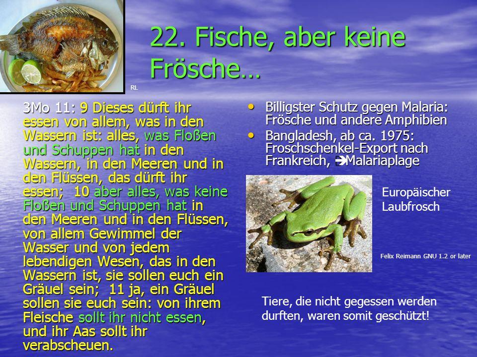 22. Fische, aber keine Frösche…