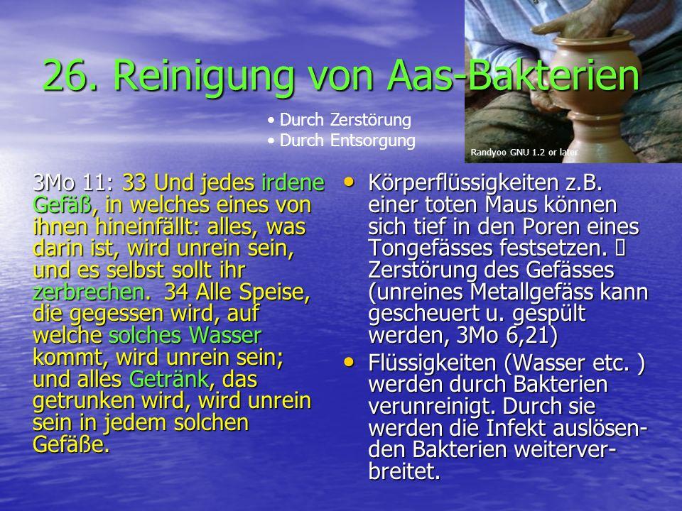 26. Reinigung von Aas-Bakterien